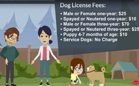 Dog License Video